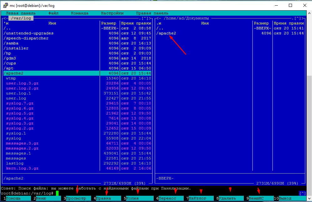 Как работать с файлами в Debian