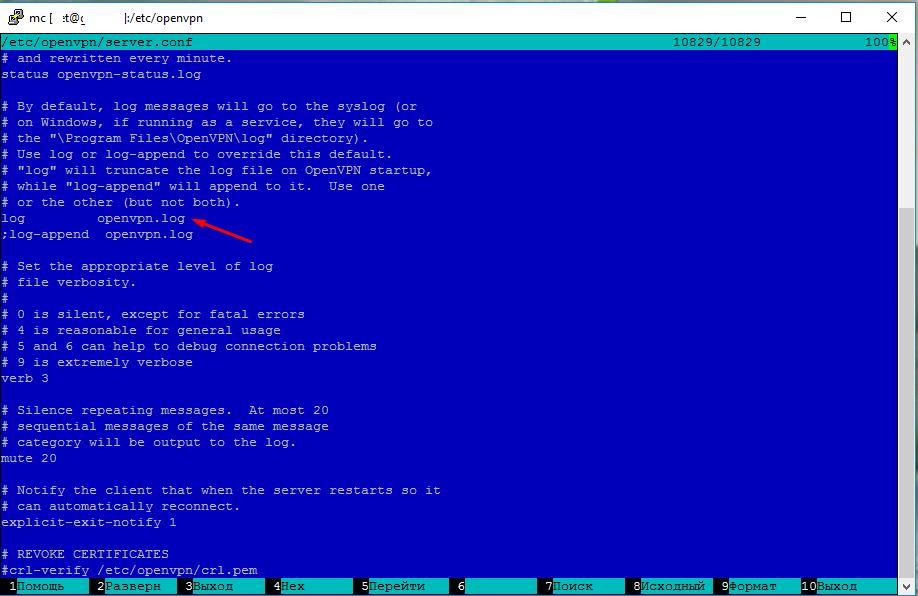 OpenVpn настройка логов сервера