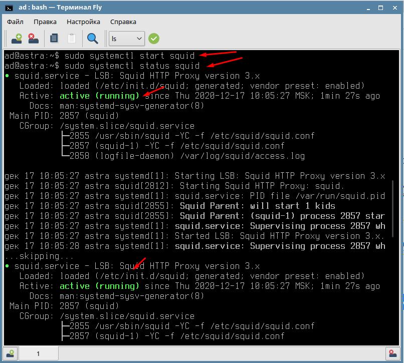 Как запустить и проверить статус Squid в Astar Linux