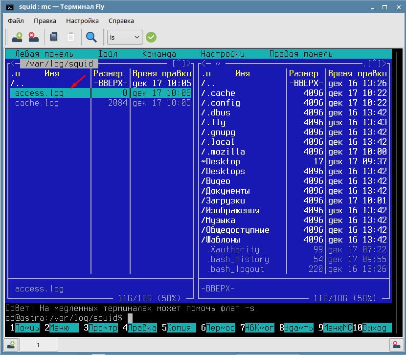 Где хранятся логи Squid в Astar Linux