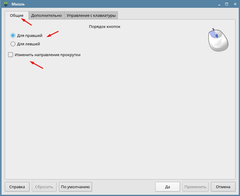 Astra Linux Orel настройка кнопок мыши