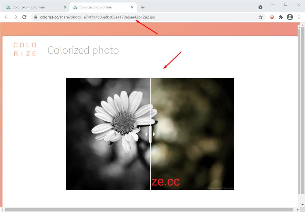 Раскрасить черно белое фото онлайн