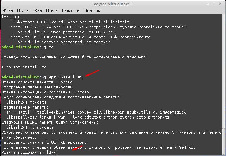 Linux Mint 20.1 mc
