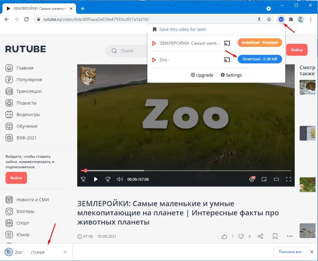 Простое скачивание видео с сайтов